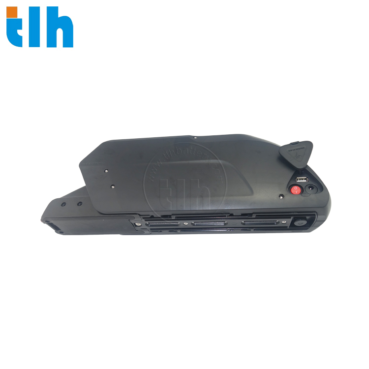 LITHIUM BATTERY FOR ELECTRIC BIKE 2